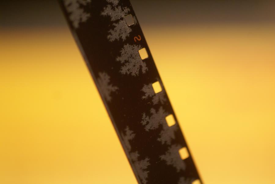 8mm Filmband mit Schimmel
